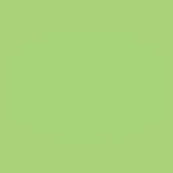 PAPPLA Logo